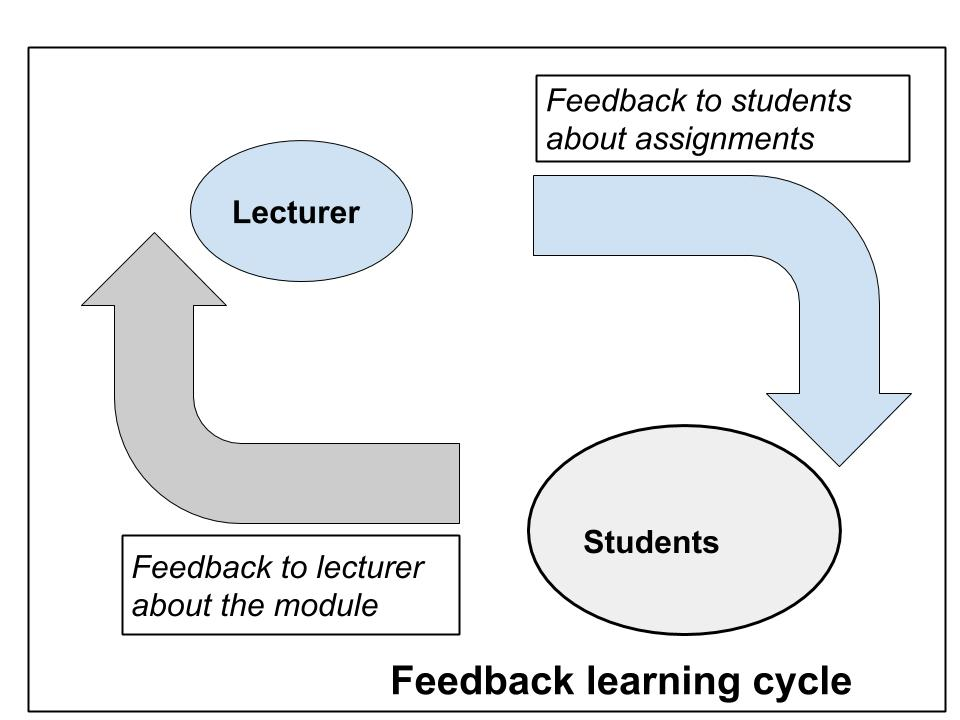 Lecturer to student feedback loop